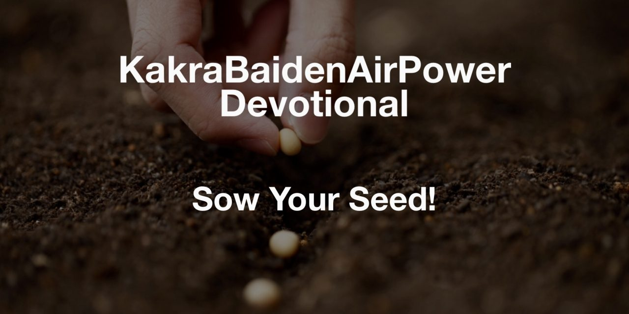Sow Your Seed!